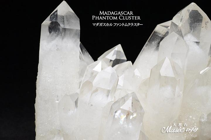 マダガスカルファントムクラスター